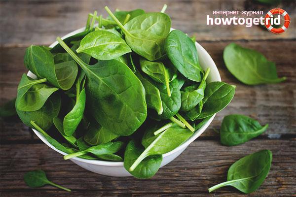 Правила выращивания шпината на подоконнике