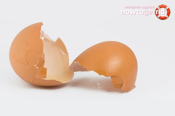 Как принимать яичную скорлупу