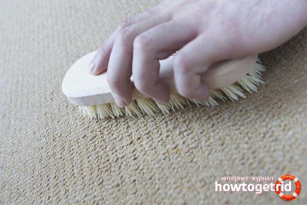 Способы чистки ковролина