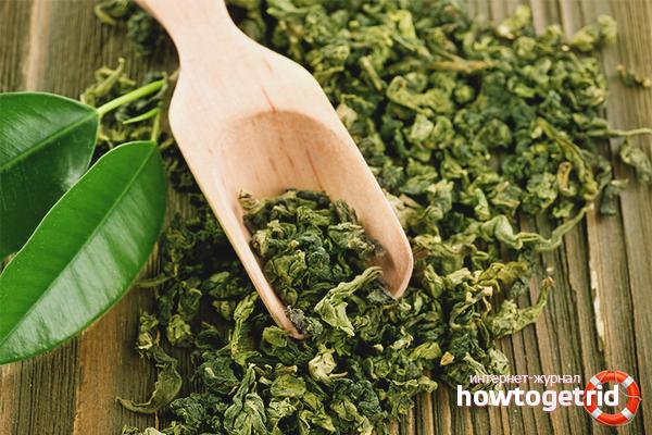 Как выбрать подходящий зелёный чай для заваривания