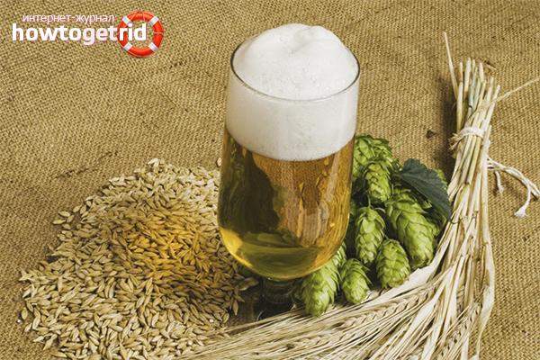 Технология приготовления пива в домашних условиях