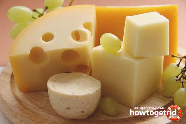 Как хранить сыр в холодильнике чтобы он не плесневел