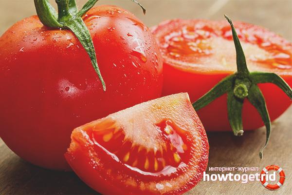 Как собрать семена из томатов