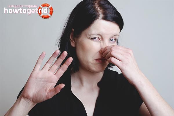 Как избавиться от запаха сырости в квартире