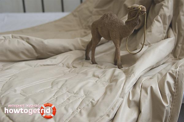 Как сушить верблюжье одеяло