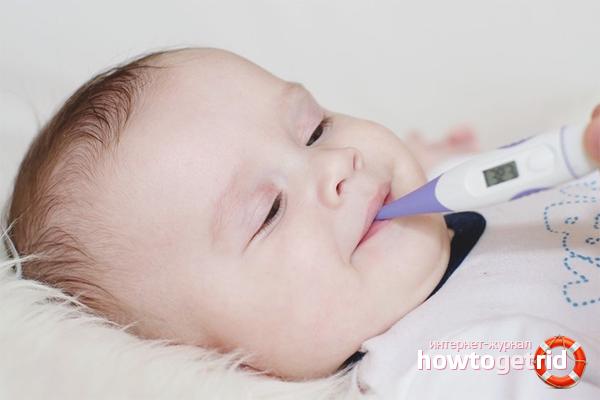 Анальная температура у новорожденного
