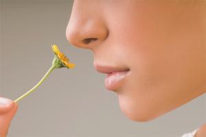 Как быстро вернуть обоняние и вкус при насморке