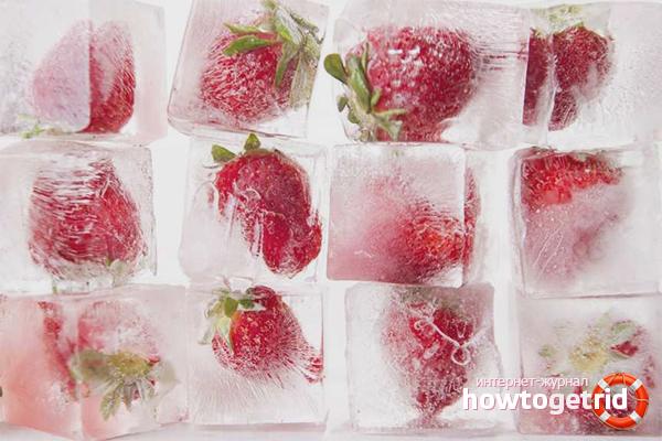 Заморозка клубники в ледяных брикетах
