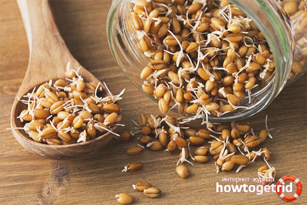 Как употреблять пророщенную пшеницу