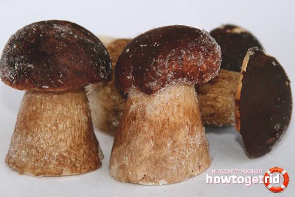 Как замораживать белые грибы