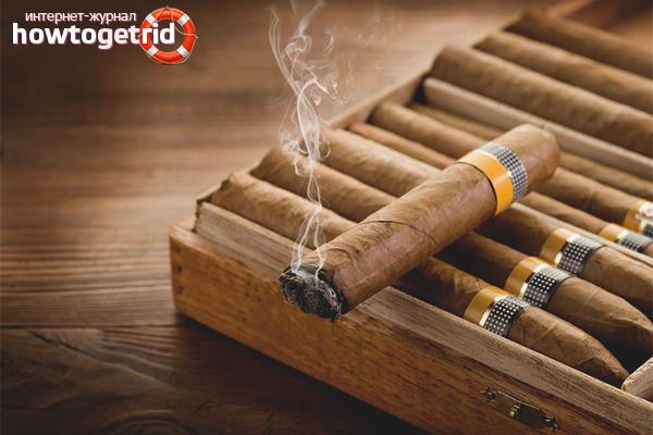 Как хранить сигары