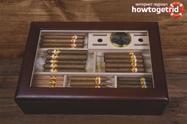 Как хранить сигары в домашних условиях