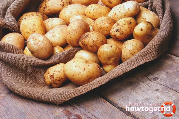 Правильное хранение картошки