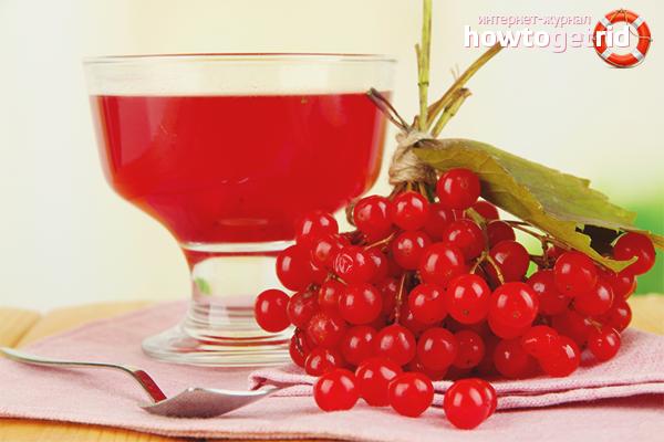 Как приготовить сок из калины: 4 рецепта