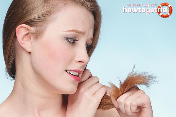 Маски для сухих кончиков волос