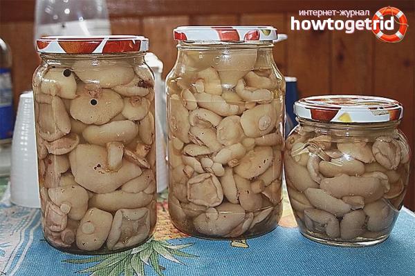 Маслята на зиму рецепты с фото
