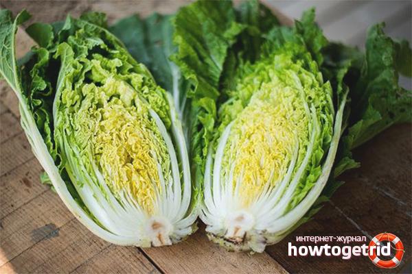 Польза китайского салата при похудении