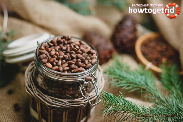 Как хранить кедровые орехи в домашних условиях