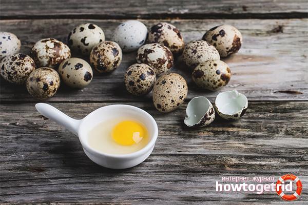 Польза перепелиных яиц для мужчин