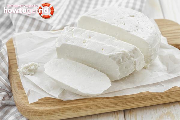 Адыгейский сыр при похудении