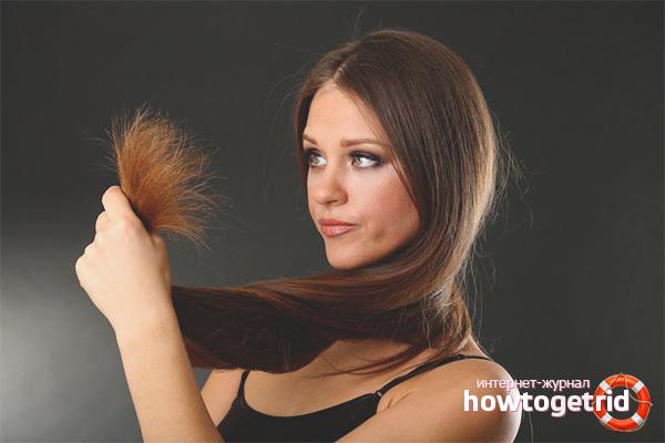 Почему секутся кончики волос: что делать?