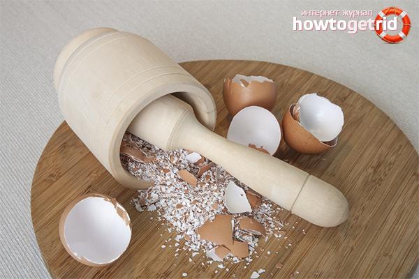 Польза и вред яичной скорлупы