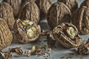 Польза и вред перегородок грецкого ореха