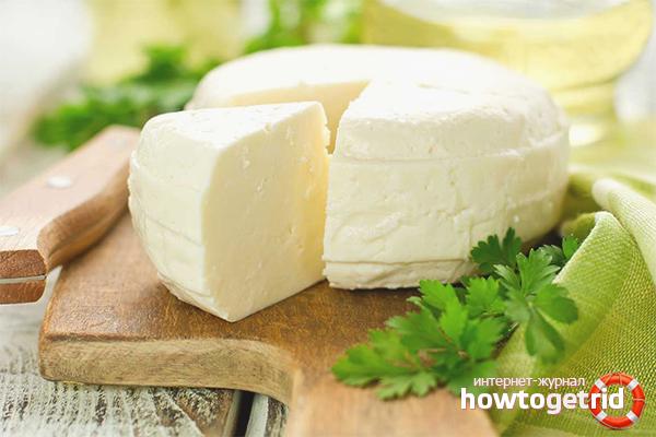 Адыгейский сыр из сметаны и молока