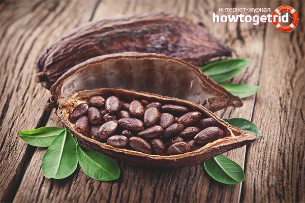 Как можно употреблять какао-бобы