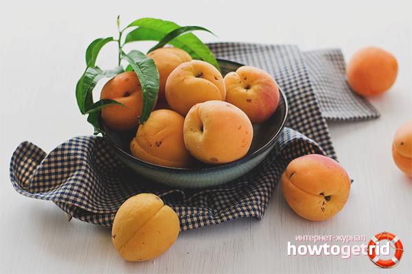 Польза абрикоса для женщин