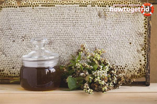 Польза гречишного мёда для женщин