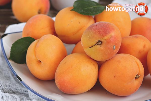 Польза и вред абрикоса при заболеваниях