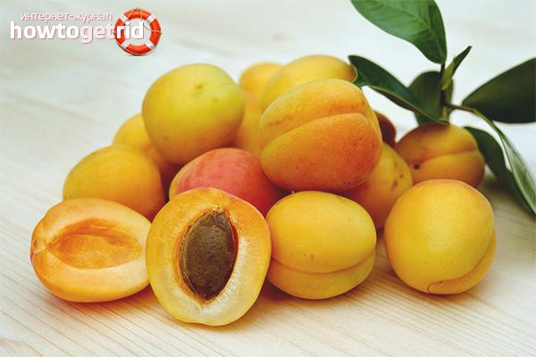 Польза и вред абрикосов