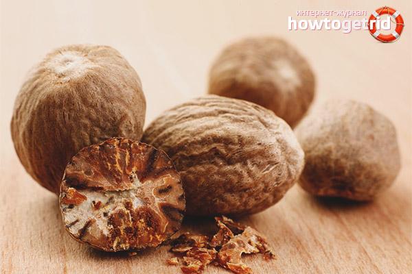 Выбор и хранение мускатного ореха