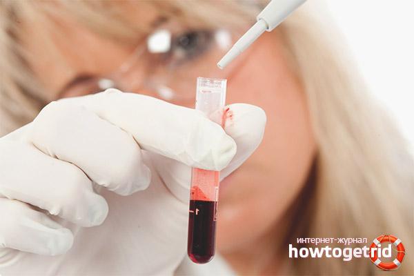 Для чего нужен анализ крови при скрининговом исследовании