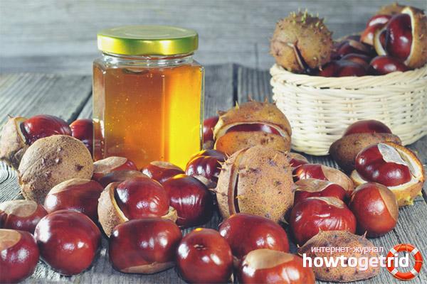 Каштановый мёд при заболеваниях