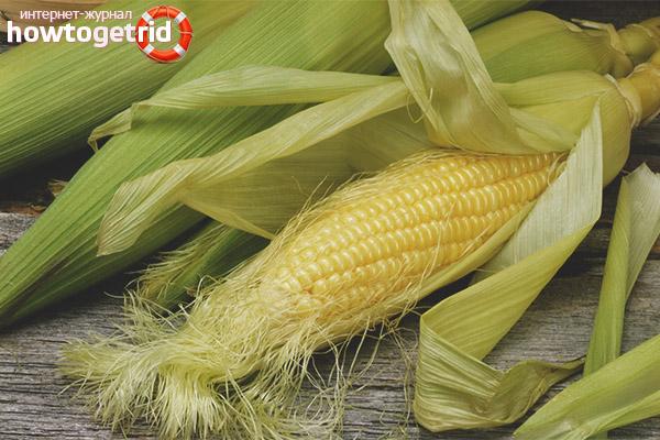 Лечебные свойства и противопоказания кукурузных рылец