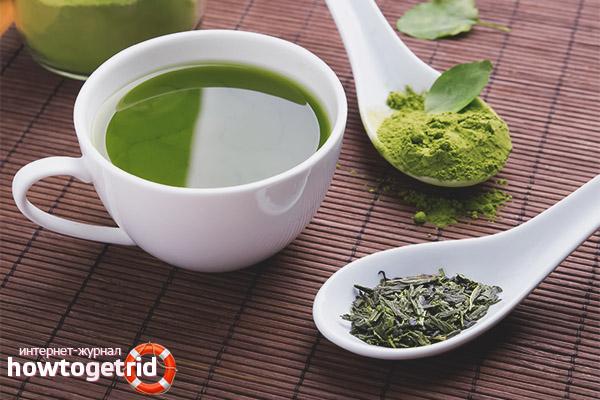 Рецепты зелёного чая с молоком