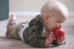 Как научить ребёнка жевать твердую пищу