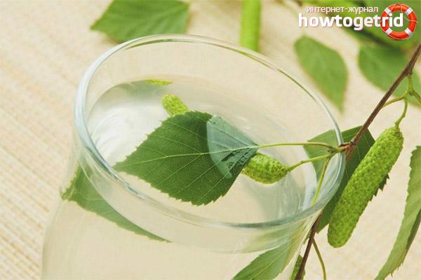 Настойка из березовых листьев