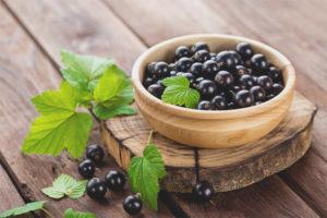 Полезные свойства и противопоказания черной смородины