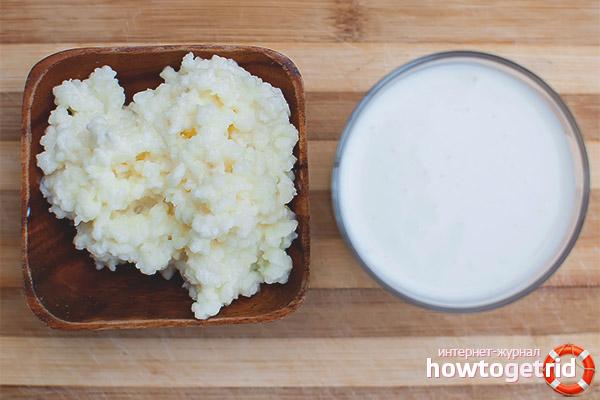 Полезные свойства и противопоказания молочного гриба