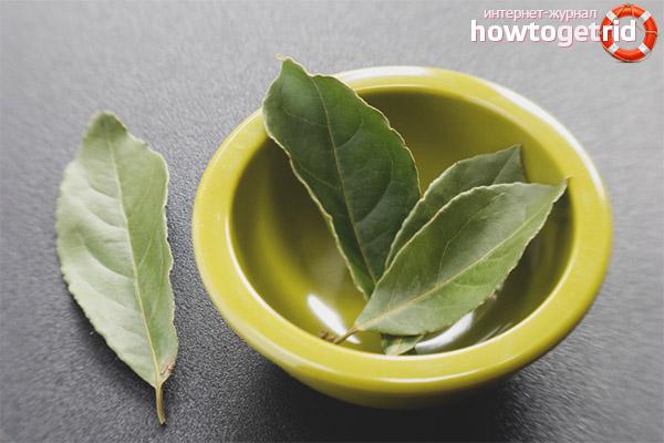 Рецепты с лавровым листом для снижения веса