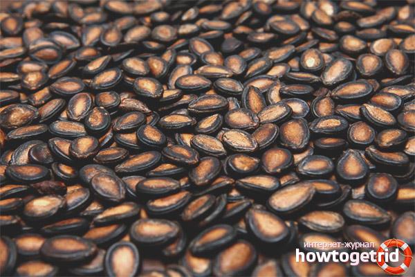 арбузные семечки от глистов отзывы