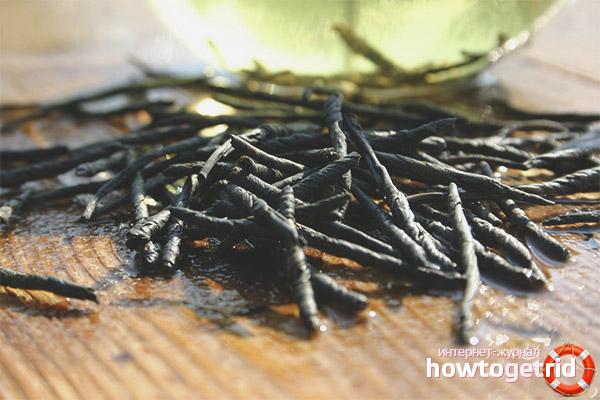 Как заваривать и пить чай кудин