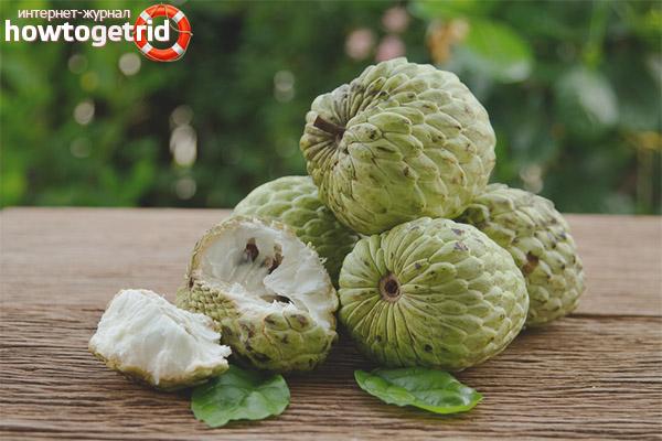 Полезные свойства и противопоказания кремового яблока