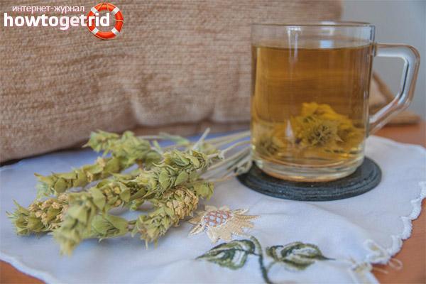 Полезные свойства и противопоказания мурсальского чая