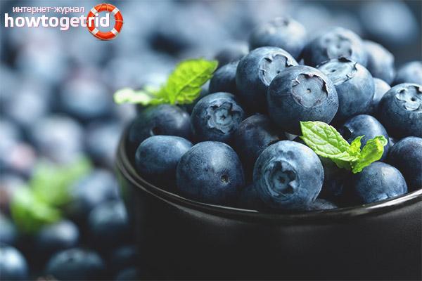 Польза черничных ягод