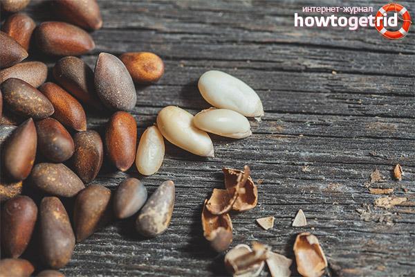Польза ядер кедровых орехов
