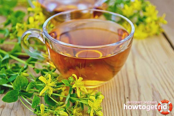 Рецепты чая из зверобоя